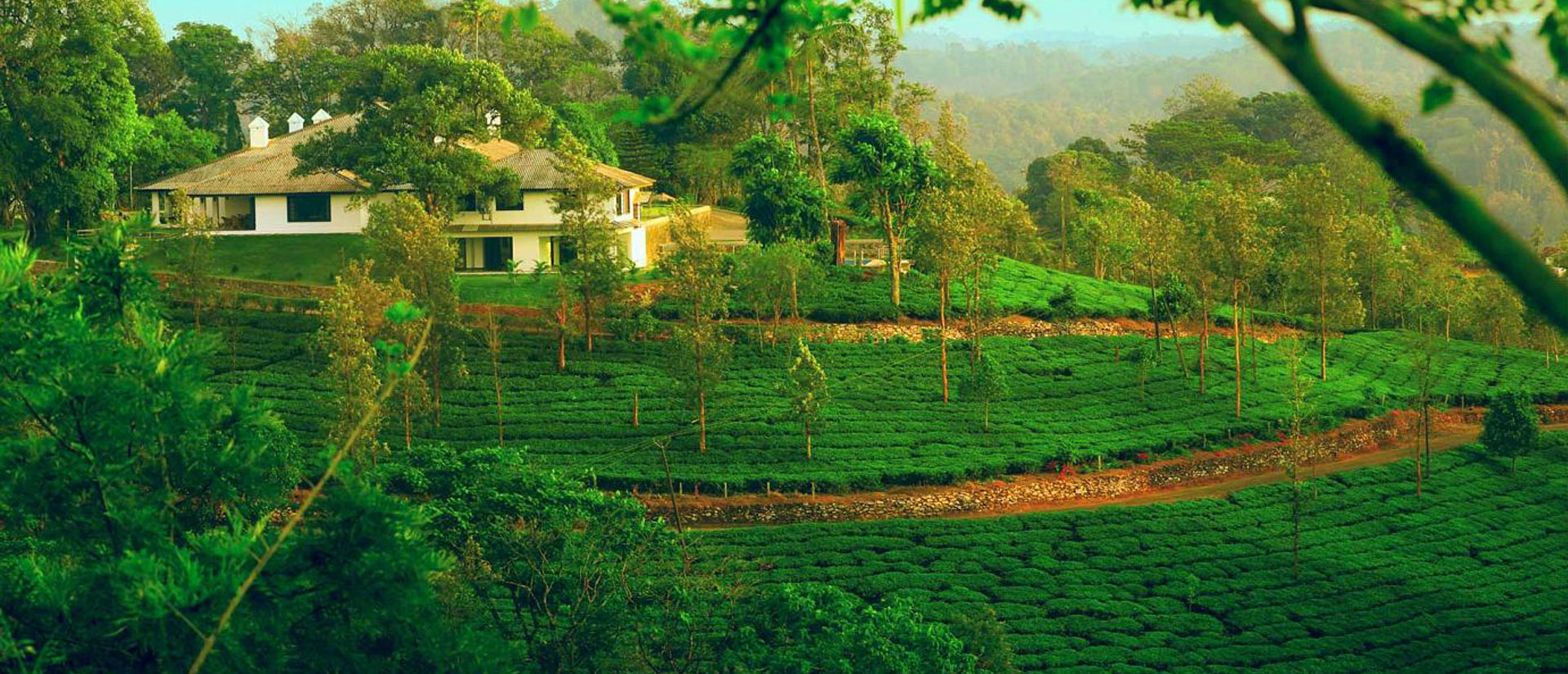 Image Result For Farm House Kerala